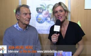 Energiologie : La thérapie des énergies - Jean-Michel Méric