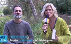 Enseignements de la forêt MÈRE - Laurent Huguelit